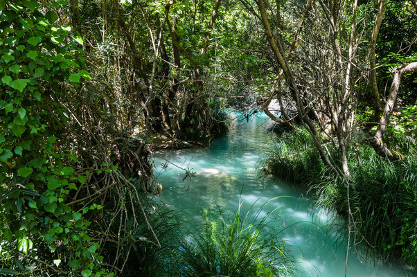 Blue waters making their way through the lush vegetation. © Madeleine Wouda