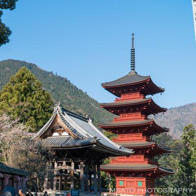 15 - Província de YAMANASHI. Minobusan Kuonji. Estabelecido por Nichiren Shonin (1222-1282), o fundador de Nichiren Shu. A melhor época para visitas fotográficas é na primavera quando as cerejeiras florescem.
