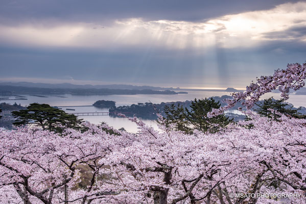 5 - Matsushima - Miyagi. Together with Miyajima in Hiroshima and Amanohashidate in Kyoto, Matsushima is considered one of the places that offers the most beautiful scenery of Japan. In the spring is magical.