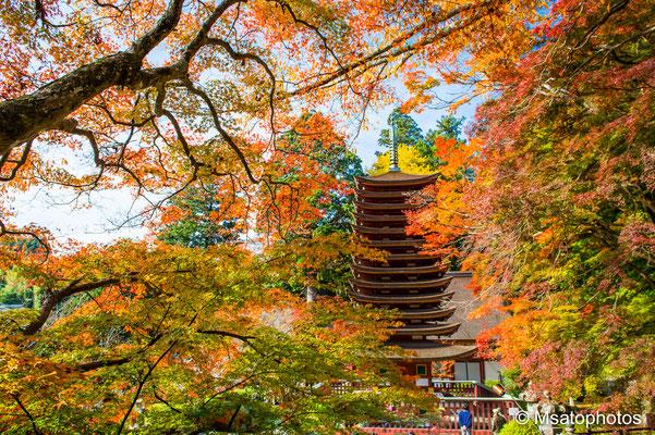 NARA Province - Sakurai city, santuário Tanzan.