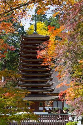 29 - Província de NARA. Santuário Tanzan no outono. A grande característica deste santuário é a pagoda de treze telhados, única no Japão.