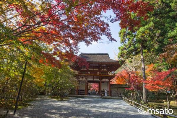 29 - Província de NARA. Portão de entrada do do templo Murouji. Também conhecido por Nionin Koya por permitir o acesso de mulheres ao templo desde épocas remotas, nesta época, muitos templos não autorizavam entrada de pessoas do sexo feminino.