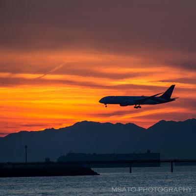 AICHI Province - Aeroporto Internacional de Chubu visto a partir do Rinku Kaihin Greenery_04