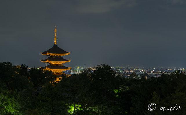 NARA Province - Nara city, Koofukuji.