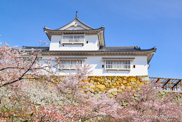 33 - Província de OKAYAMA. Castelo de Tsuyama. Dentro do parque Kakuzan, na cidade de Tsuyama, temos as ruínas do castelo de Tsuyama. O que impressiona aqui são os paredões de pedra e as milhares de cerejeira, na primavera o visual é de tirar o fôlego.