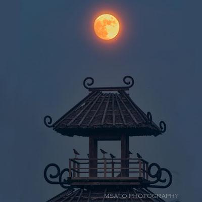 29 - Província de NARA. Ruínas de Karako Kagi - Sítio arqueológico do Período YAYOI(300 BC - 300 AC) localizado na cidade de Tawaramoto. O valor histórico é óbvio, mas o que chama a atenção é uma torre construída com base nas escavações realizadas.