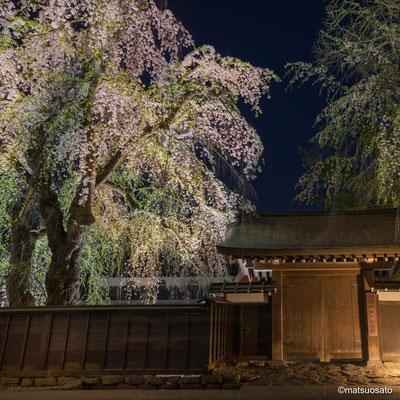 4 - Província de AKITA. Portão de uma casa de samurai. A cidade de Kakunodate é conhecida como a pequena Kyoto de Tohoku e sua característica principal são as casas dos samurais que viveram aqui antigamente.