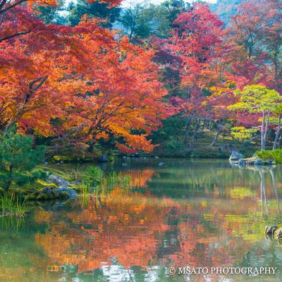 KYOTO Province - Kyoto city, Kinkakuji.