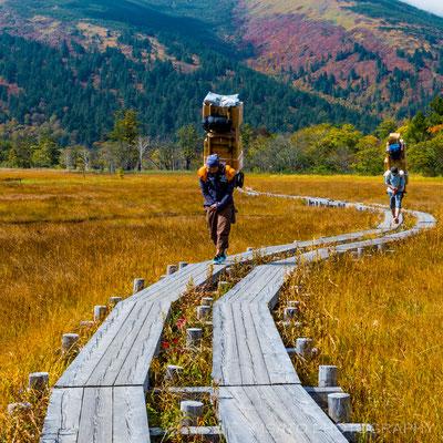GUNMA Province - Parque Nacional Oze(Ozegahara)_04