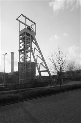 Grune König, Neunkirchen