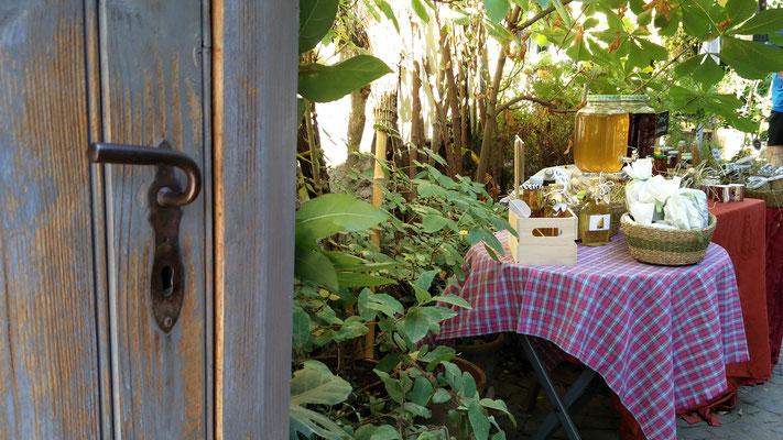 Ober-Mörlen Öffnet die Tore, Foto: Beatrix van Ooyen 28.08.2016 - Eine Impression von etwa 50 Veranstaltungspunkten