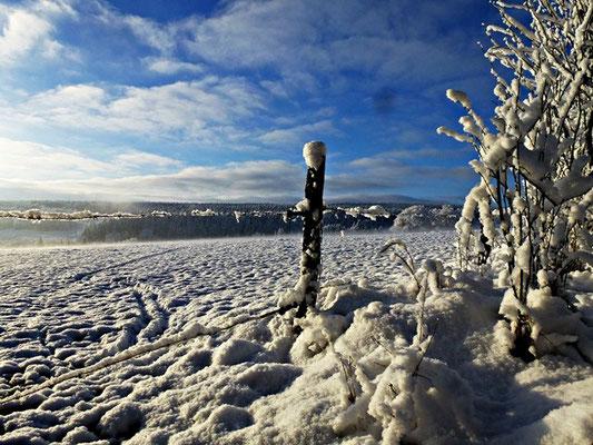 wintervergnügen urlaub auf dem bauernhof eifel