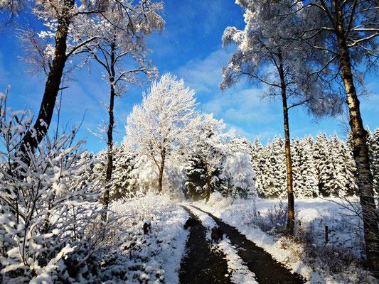 schnee spaß bauernhofurlaub eifel