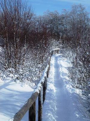 winter-monschau eifel