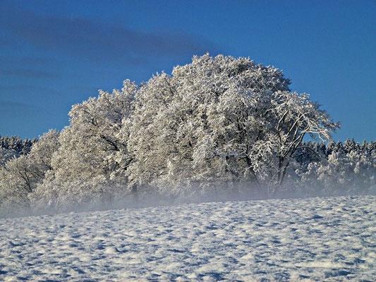 bauernhofurlaub eifel im winter