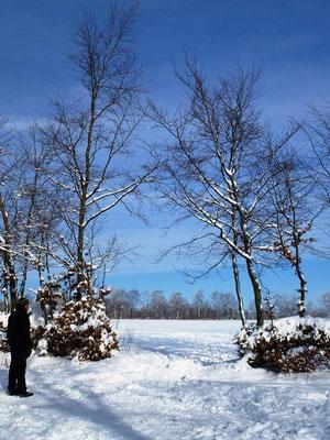 Bauernhof nrw-Winter