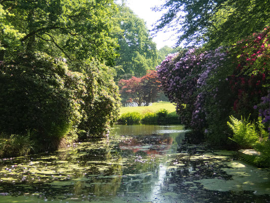 Schlosspark Lütetsburg, Impressionen