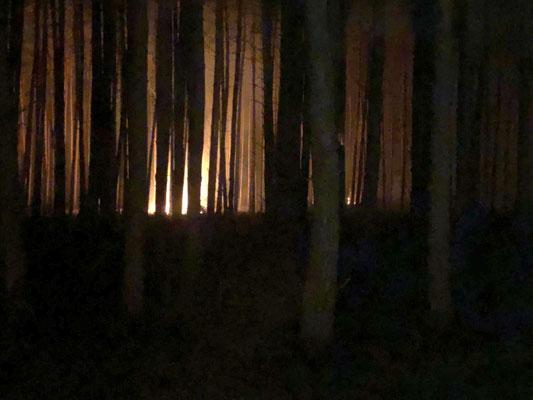 Hotspot des Waldbrandes bei Nacht