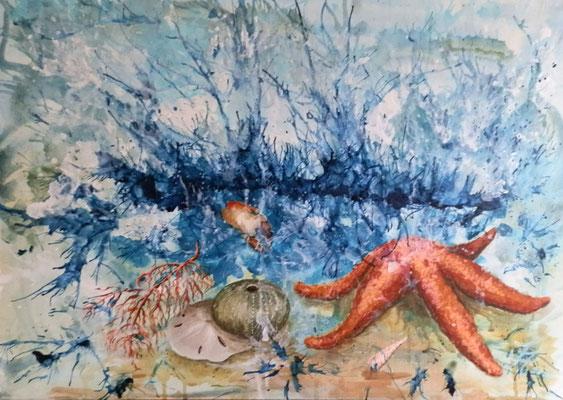 Fundstücke III [Acryl auf Leinwand, 70x50cm i. Schattenfuge] © Ingrid Achsel