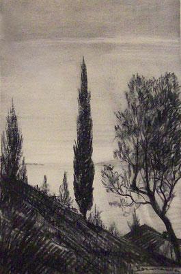Dintorni di Verona - 1952 - carboncino su carta - 25x30