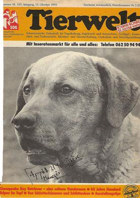 Tierwelt Titelblatt