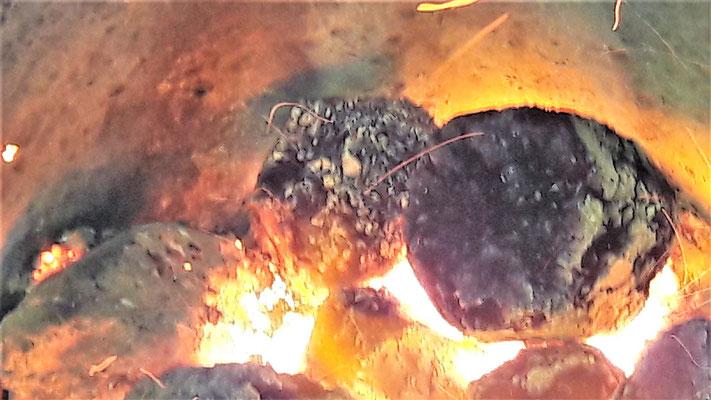Биотопливные брикеты Укрсинтгаз