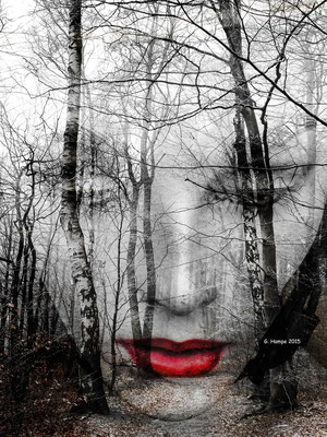 The face in the forest 75 x 100 cm Alu-Dibond limited edition of 20, signed at the back