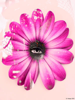 The eye and the flower