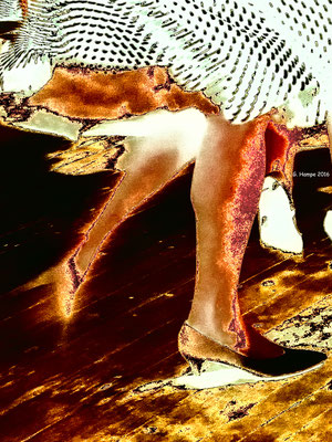Dancing feet - Alu-Dibond 45x60 Mixed Media edition