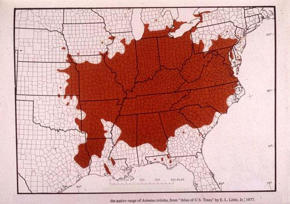 Natürliches Verbreitungsgebiet Asimina triloba in USA