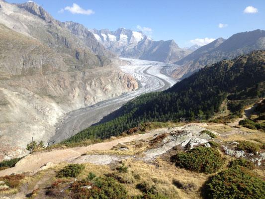 Wallis, Aletschgletscher. Wie fast alle Alpengletscher sehr stark rückgängig.