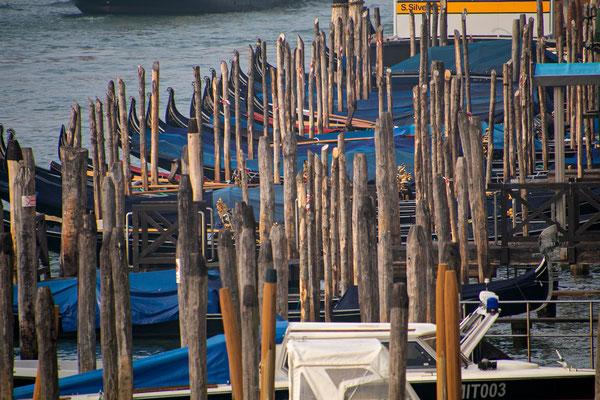 Venedig 70