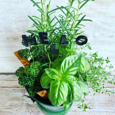 2018年6月 東京 表参道1dayレッスン 料理に使える『キッチンハーブの寄せ植え』作り
