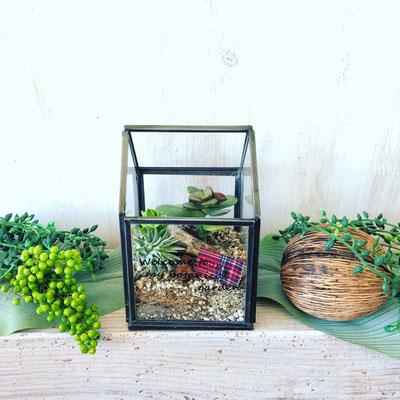 2018年3月 長野 飯田1dayレッスン『多肉植物&エアプランツのHouse型テラリウム』作り