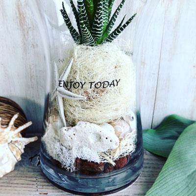 2018年6月 長野 飯田1dayレッスン『貝がら&多肉植物のテラリウム』作り