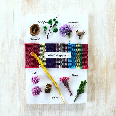 8月 〈長野 飯田〉親子ワークショップ『植物標本』作り