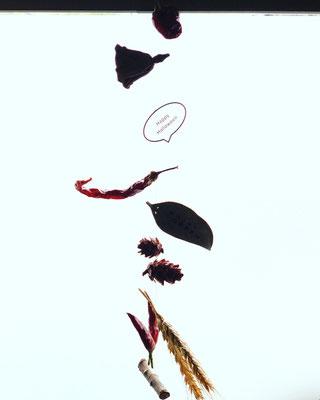 10月〈長野 飯田 ハロウィンワークショップ〉「ハロウィン ガーランド」作り