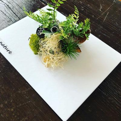 4月東京 表参道1dayレッスン『壁掛けインテリアグリーン』作り
