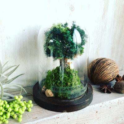 2018年1月 東京 表参道1dayレッスン『シンボルツリーを作るドーム型テラリウム』作り