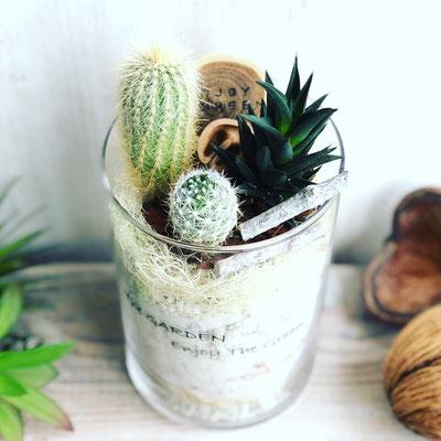 4月 長野 飯田1dayレッスン『サボテン&多肉植物のテラリウム』作り