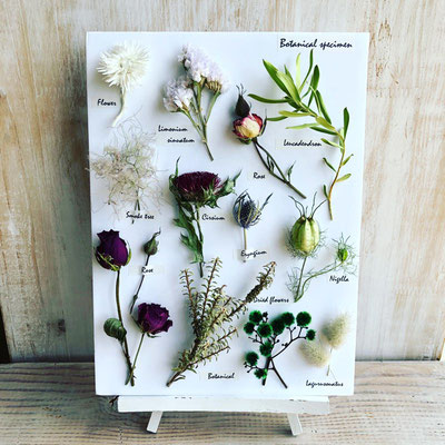 2018年10月 東京 表参道リクエストワークショップ『植物標本〈フラワー〉』作り