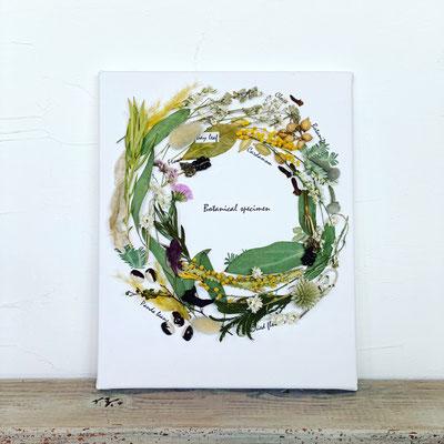4月 東京 表参道1dayレッスン『リースのかたちの植物標本』作り