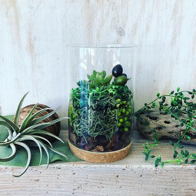 2018年2月 長野  飯田1dayレッスン『多肉植物のテラリウム』作り