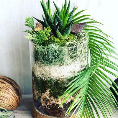 8月 長野 飯田1dayレッスン『多肉植物の夏テラリウム』作り