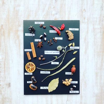2018年8月 長野 飯田1dayレッスン『植物標本〈スパイス〉』作り