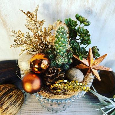 2018年11月 長野 飯田1dayレッスン『サボテンを使ったクリスマステラリウム』作り