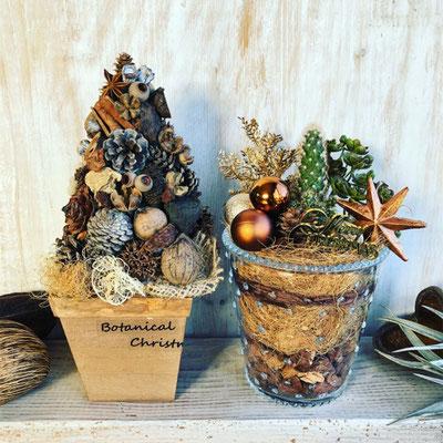 2018年11月 長野 飯田1dayレッスン『木の実のクリスマスツリー』&『サボテンを使ったクリスマステラリウム』作り