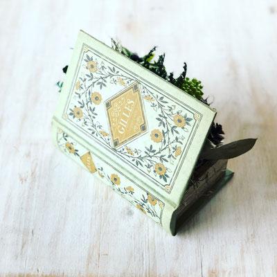 2018年1月 長野 飯田1dayレッスン『Book型インテリアグリーン』作り