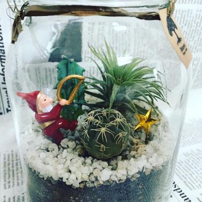 11月1dayレッスン「クリスマス テラリウム」