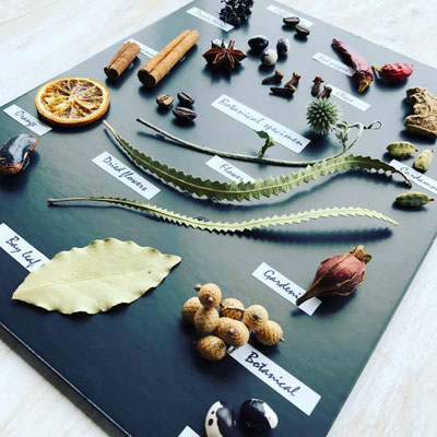 2018年8月 東京 表参道1dayレッスン『植物標本〈スパイス〉』作り